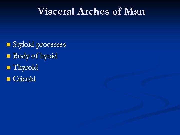 Visceral Arches of Man Styloid processes n Body of hyoid n Thyroid n Cricoid