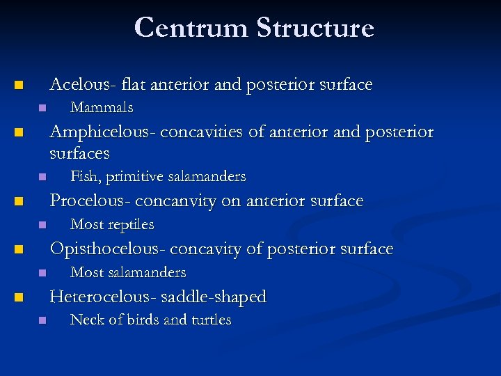 Centrum Structure Acelous- flat anterior and posterior surface n n Mammals Amphicelous- concavities of