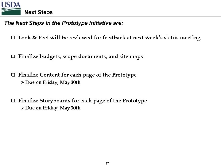 Next Steps The Next Steps in the Prototype Initiative are: q Look & Feel