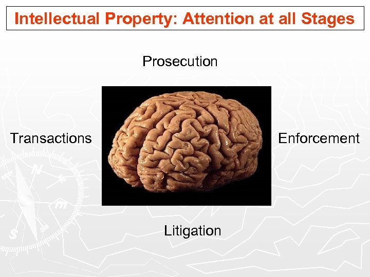 Intellectual Property: Attention at all Stages Prosecution Transactions Enforcement Litigation
