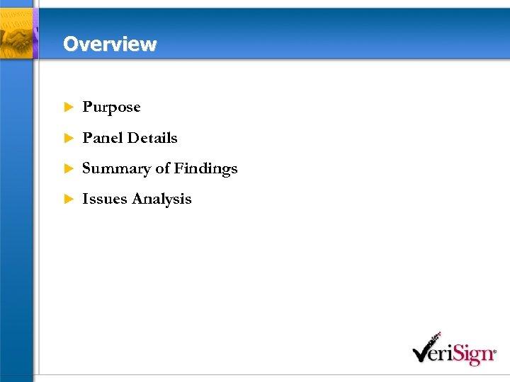 Overview u Purpose u Panel Details u Summary of Findings u Issues Analysis