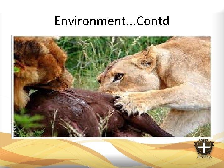 Environment. . . Contd