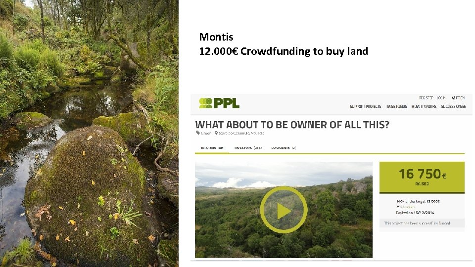 Montis 12. 000€ Crowdfunding to buy land