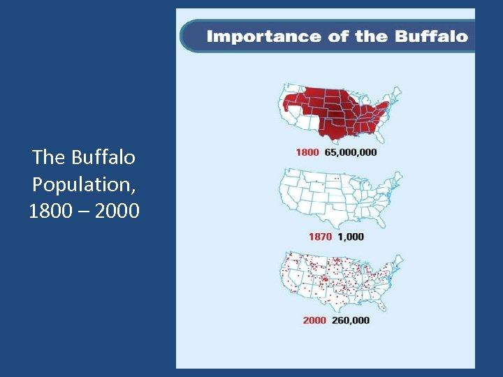 The Buffalo Population, 1800 – 2000