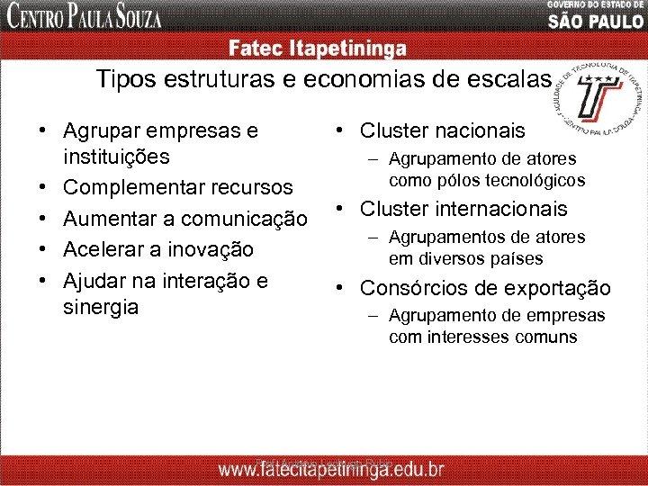 Tipos estruturas e economias de escalas • Agrupar empresas e instituições • Complementar recursos