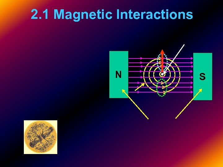 2. 1 Magnetic Interactions N S
