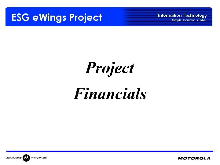 ESG e. Wings Project Financials Information Technology Simple, Common, Global