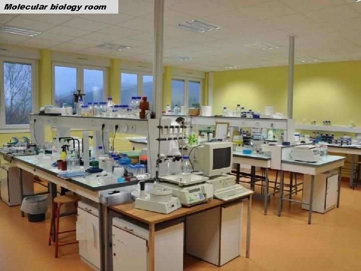 Molecular biology room