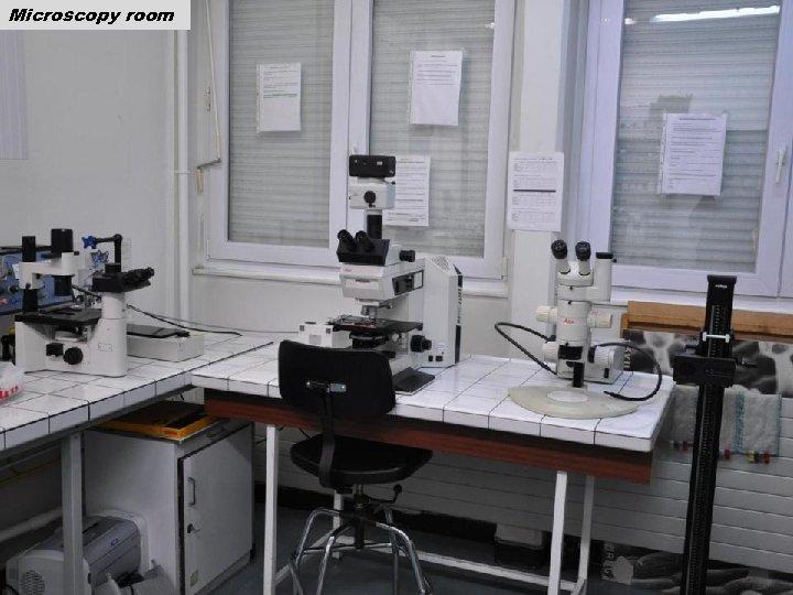 Microscopy room