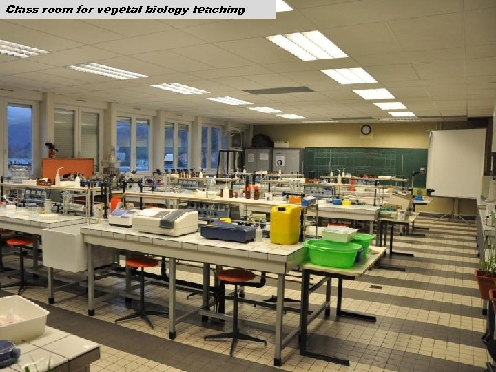 Class room for vegetal biology teaching