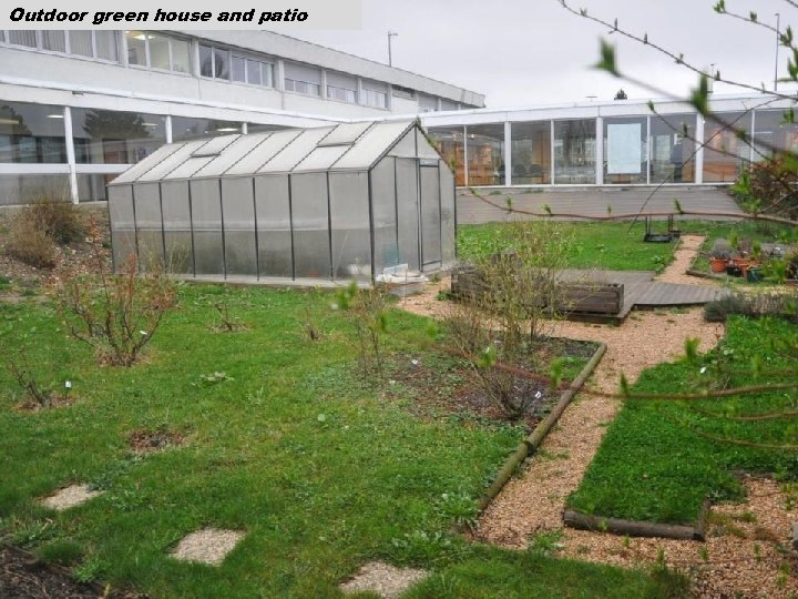 Outdoor green house and patio