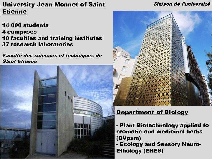University Jean Monnet of Saint Etienne Maison de l'université 14 000 students 4 campuses