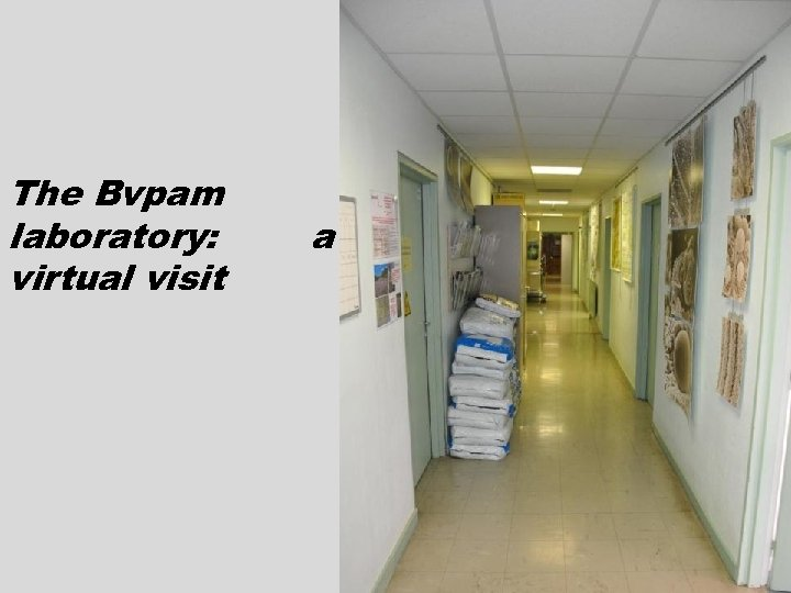The Bvpam laboratory: virtual visit a
