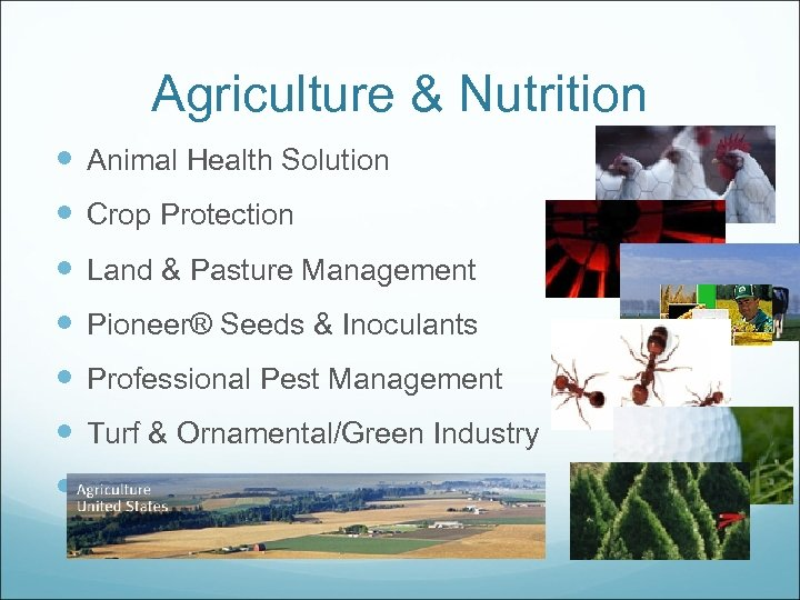 Agriculture & Nutrition Animal Health Solution Crop Protection Land & Pasture Management Pioneer® Seeds