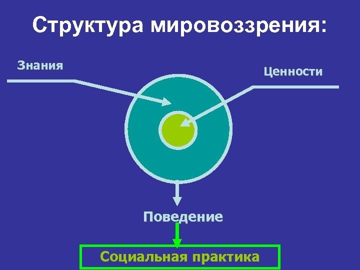 Структура мировоззрения: Знания Ценности Поведение Социальная практика