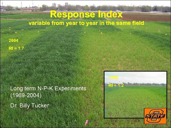 Response Index variable from year to year in the same field 2004 RI =