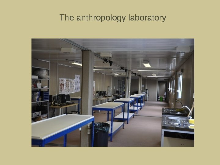 The anthropology laboratory