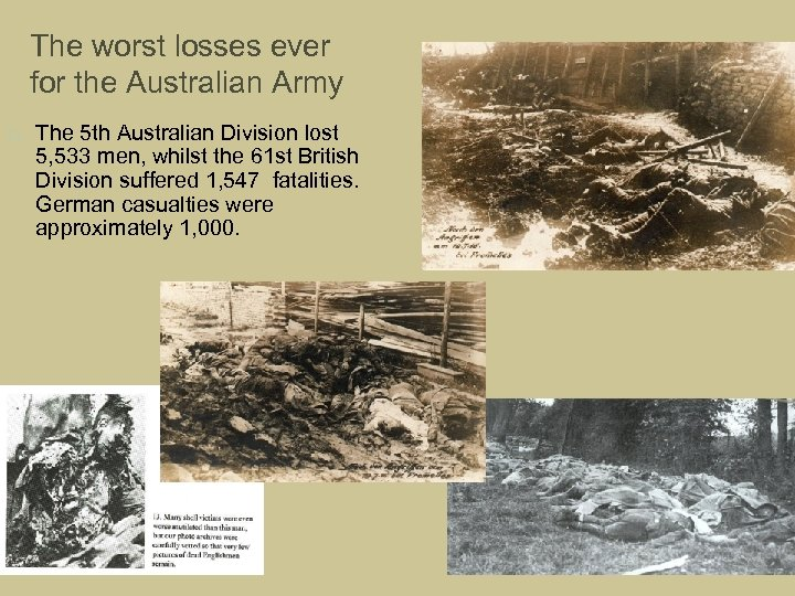 The worst losses ever for the Australian Army The 5 th Australian Division lost