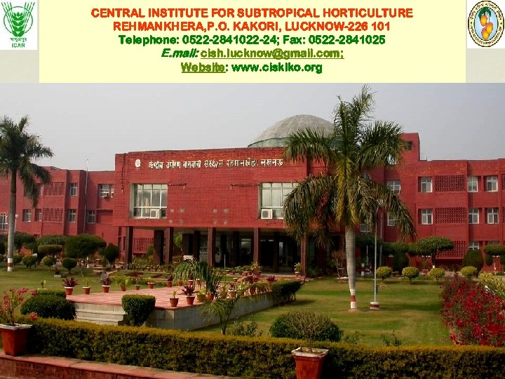 CENTRAL INSTITUTE FOR SUBTROPICAL HORTICULTURE REHMANKHERA, P. O. KAKORI, LUCKNOW-226 101 Telephone: 0522 -2841022