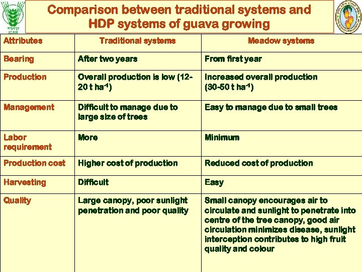 Comparison between traditional systems and HDP systems of guava growing Attributes Traditional systems Meadow