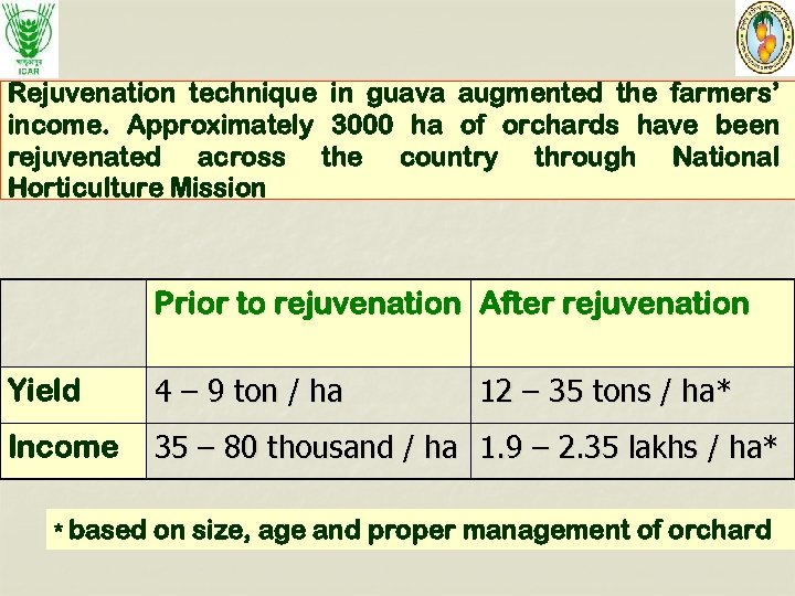 Rejuvenation technique in guava augmented the farmers' income. Approximately 3000 ha of orchards have