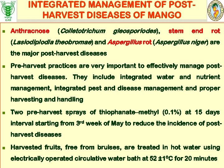 INTEGRATED MANAGEMENT OF POSTHARVEST DISEASES OF MANGO n Anthracnose (Colletotrichum gleosporiodes), stem end rot