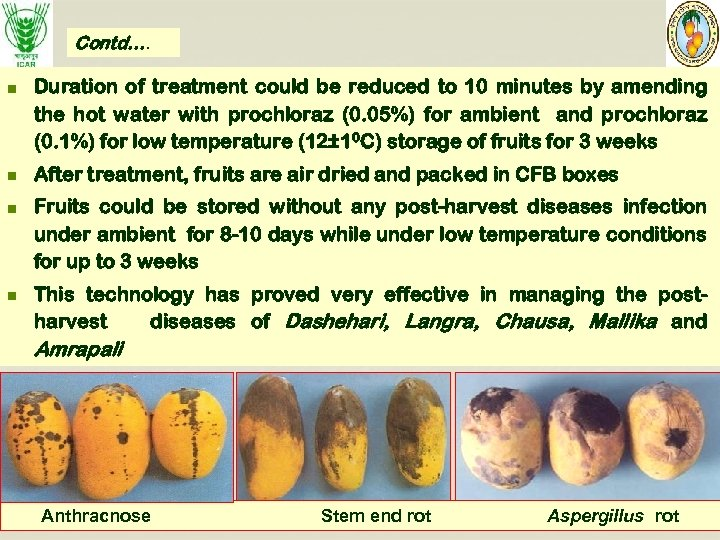 Contd…. n n Duration of treatment could be reduced to 10 minutes by amending