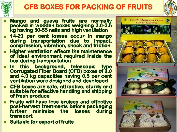 CFB BOXES FOR PACKING OF FRUITS n n n n Mango and guava fruits