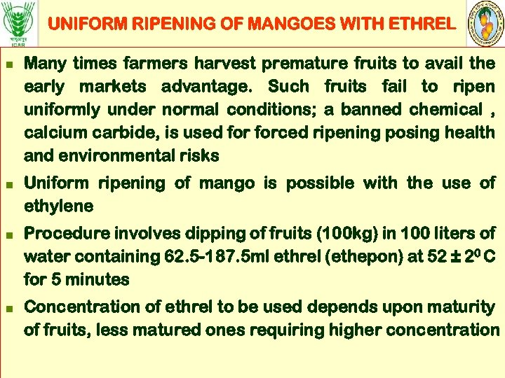 UNIFORM RIPENING OF MANGOES WITH ETHREL n n Many times farmers harvest premature fruits