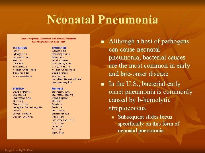 Neonatal Pneumonia n n Although a host of pathogens can cause neonatal pneumonia, bacterial