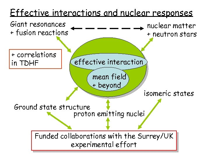Effective interactions and nuclear responses Giant resonances + fusion reactions + correlations in TDHF