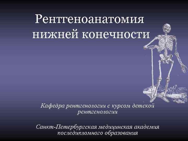 Рентгеноанатомия нижней конечности Кафедра рентгенологии с курсом детской   рентгенологии Санкт-Петербургская медицинская академия