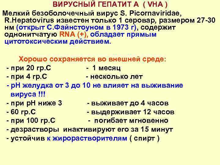ВИРУСНЫЙ ГЕПАТИТ А ( VHA ) Мелкий безоболочечный вирус S. Picornaviridae, R. Hepatovirus известен