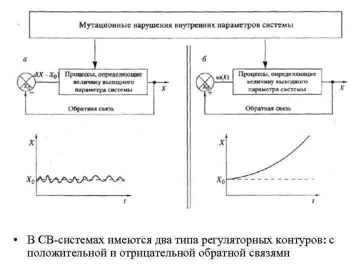 • В СВ-системах имеются два типа регуляторных контуров: с положительной и отрицательной обратной