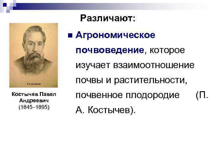 Различают: n Агрономическое почвоведение, которое изучает взаимоотношение почвы и растительности, Костычев Павел Андреевич (1845–