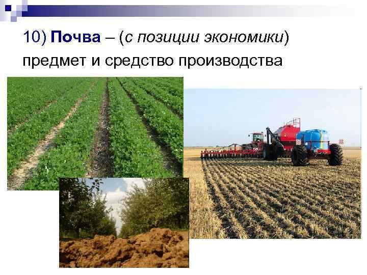 10) Почва – (с позиции экономики) предмет и средство производства