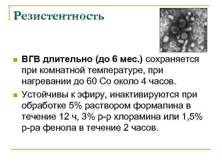 Резистентность n n ВГВ длительно (до 6 мес. ) сохраняется при комнатной температуре, при