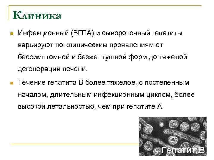 Клиника n Инфекционный (ВГПА) и сывороточный гепатиты варьируют по клиническим проявлениям от бессимптомной и