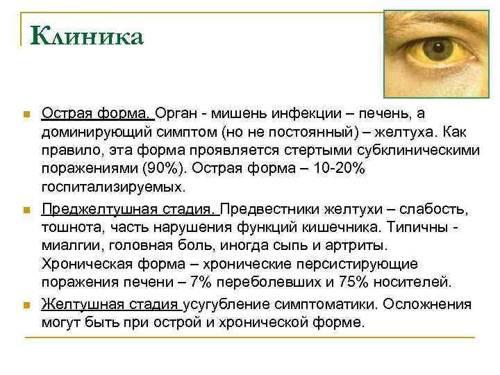 Клиника n n n Острая форма. Орган - мишень инфекции – печень, а доминирующий