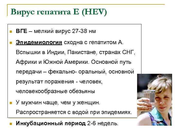 Вирус гепатита Е (HEV) n ВГЕ – мелкий вирус 27 -38 нм n Эпидемиология