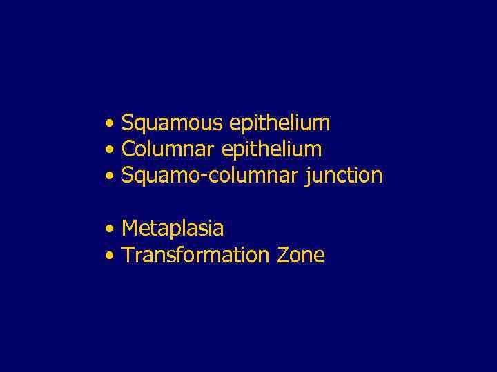 • Squamous epithelium • Columnar epithelium • Squamo-columnar junction • Metaplasia • Transformation