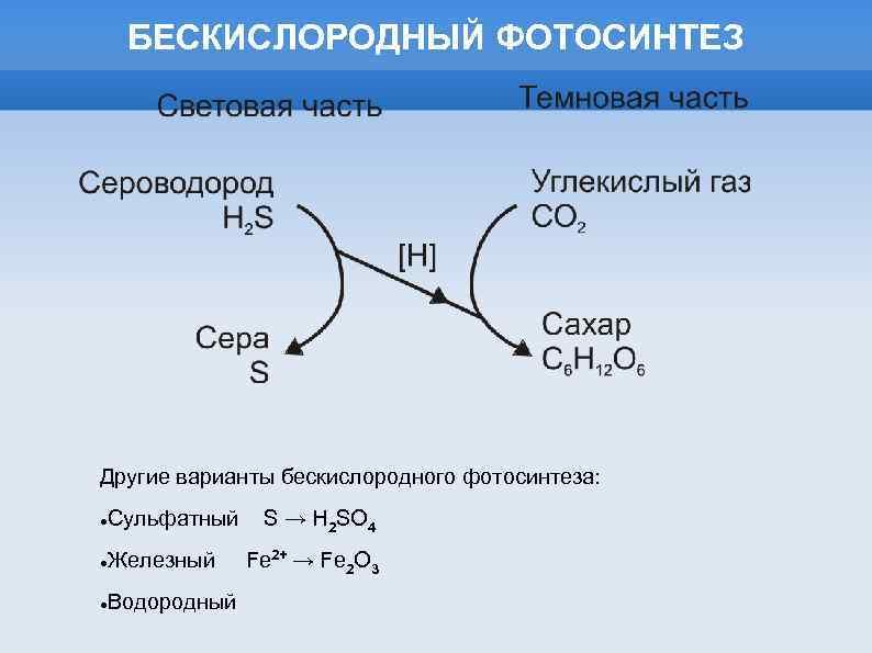вообще-то была бескислородный фотосинтез химическая формула новый изодом