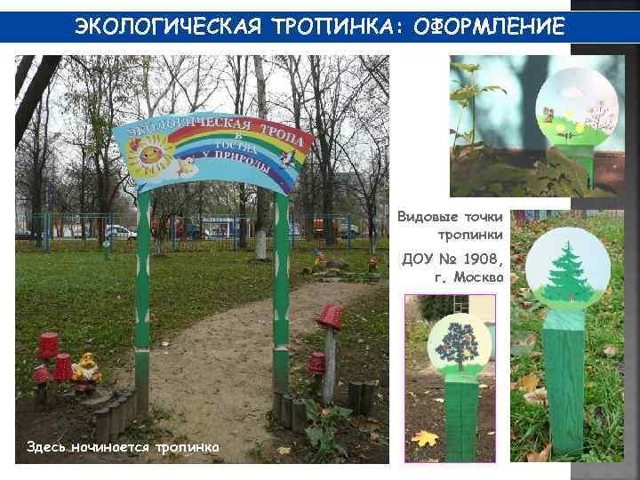 Картинки для экологической тропы в доу