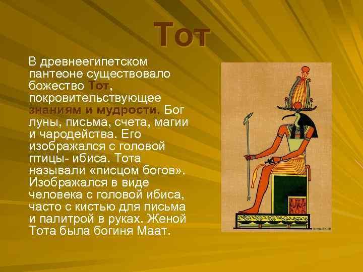 Тот В древнеегипетском пантеоне существовало божество Тот, покровительствующее знаниям и мудрости. Бог луны, письма,