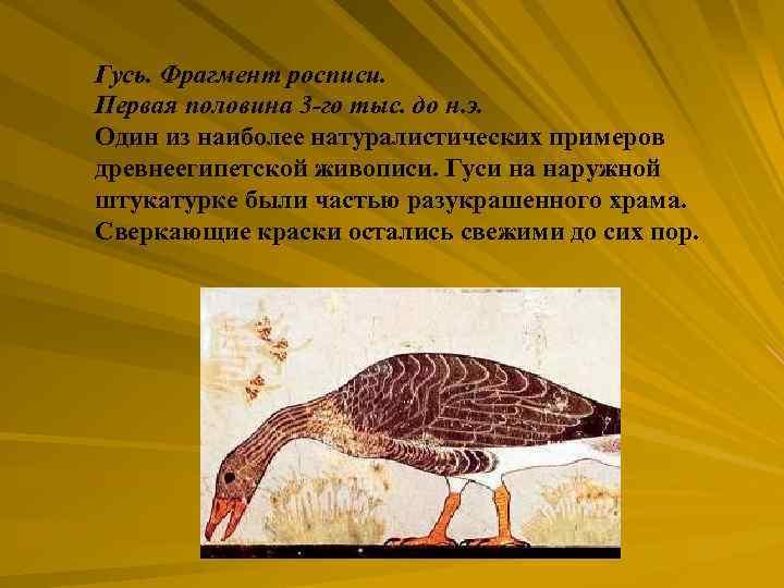 Гусь. Фрагмент росписи. Первая половина 3 -го тыс. до н. э. Один из наиболее
