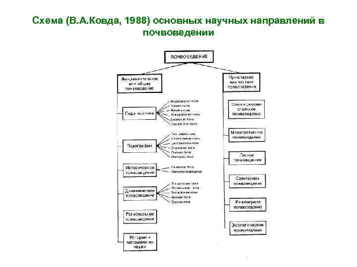 Схема (В. А. Ковда, 1988) основных научных направлений в почвоведении