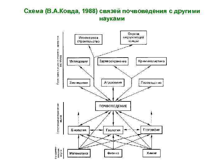Схема (В. А. Ковда, 1988) связей почвоведения с другими науками