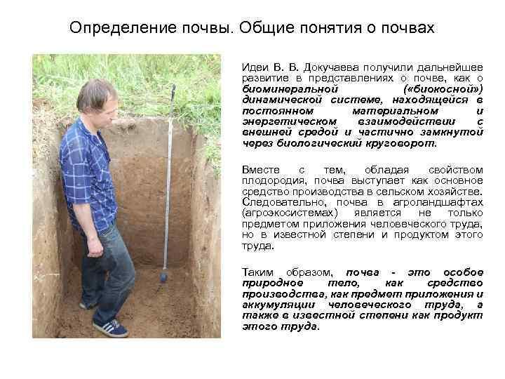 Определение почвы. Общие понятия о почвах Идеи В. Докучаева получили дальнейшее развитие в представлениях