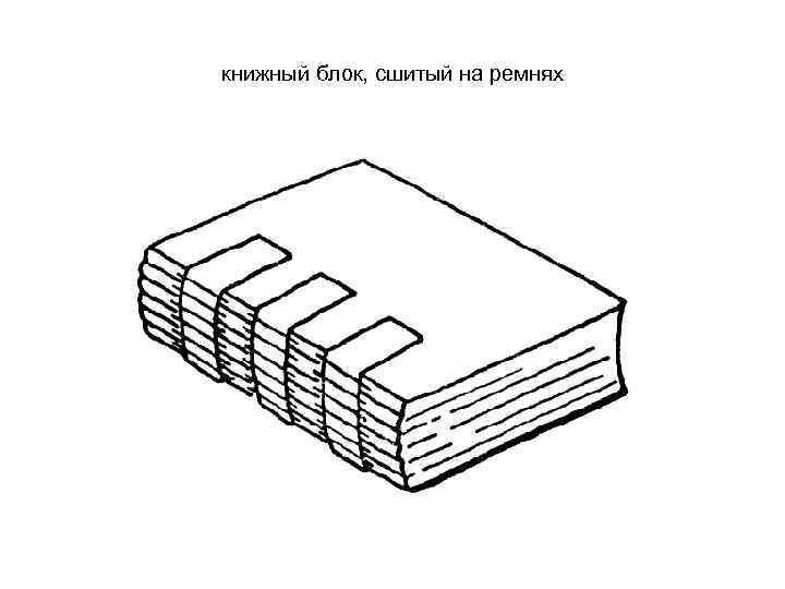 Книжные блоки картинки