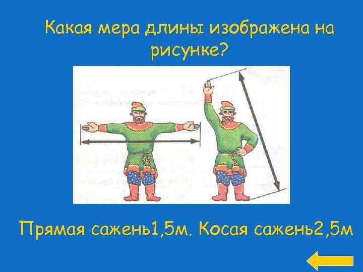 Какая мера длины изображена на рисунке? Прямая сажень1, 5 м. Косая сажень2, 5 м